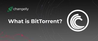 Что из себя представляет криптовалюта BitTorrent (BTT)?